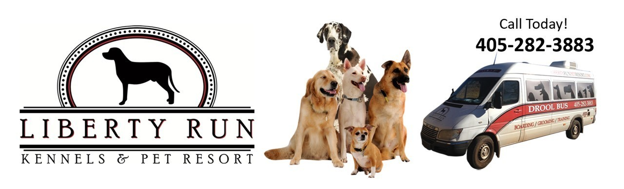 Liberty Run Pet Resort