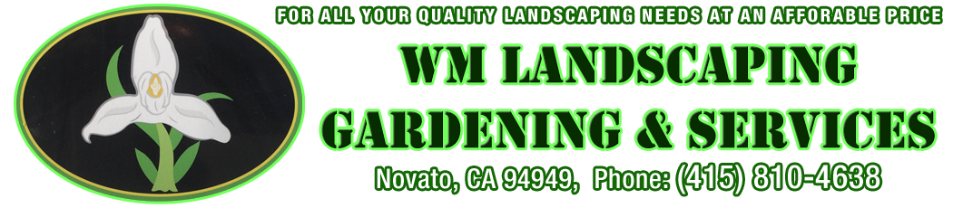 WM Landscaping Gardening & Services