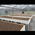 Rider farms aquaponics   beggs  ok   complete systems for all year round growing  gardening  farming20170509 9839 185ylzc