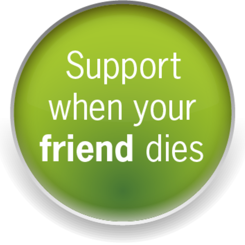 Button  support friend20170823 16098 lcyxdi 960x960