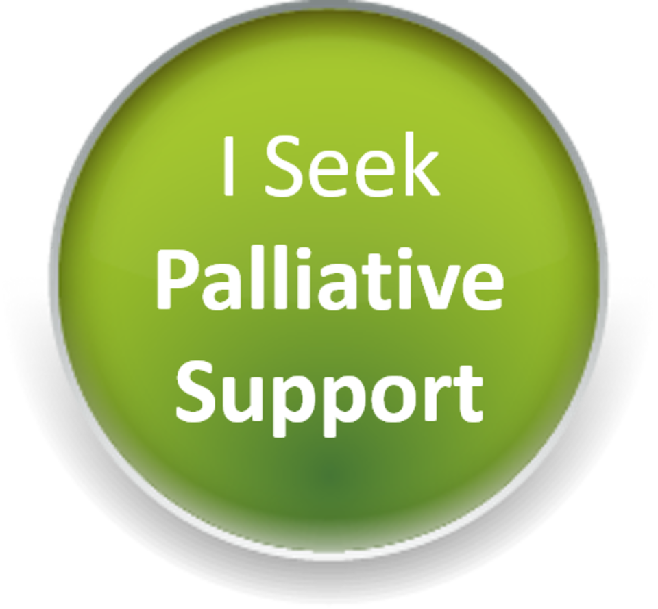 I seek palliative support20171130 27239 3d3v5r
