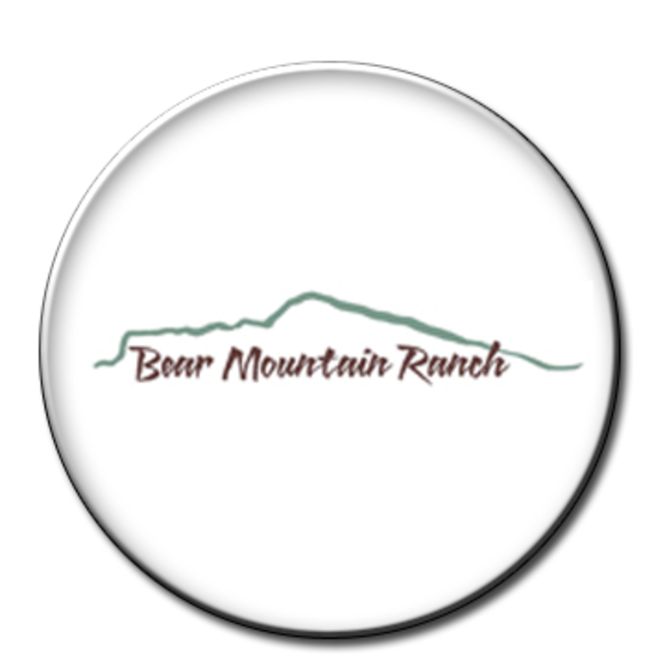 Bearmountainranchtoplodges brockray 5star20180128 15618 1b2iays