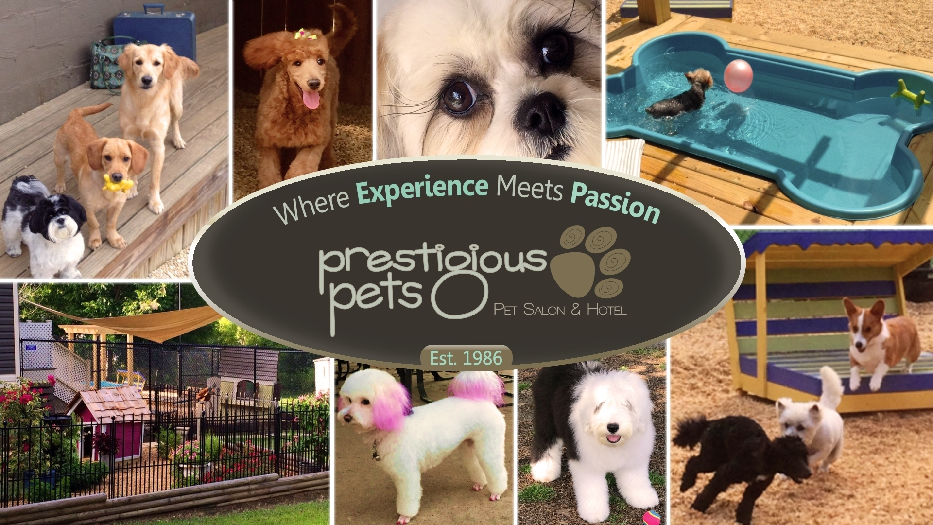 Prestigious Pets Salon & Pet Hotel
