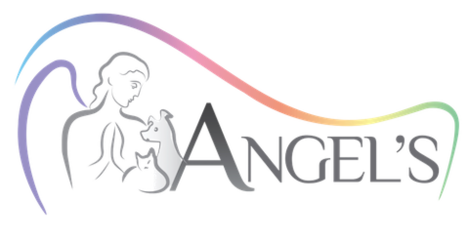 Angels logo cmyk clear 2 480x
