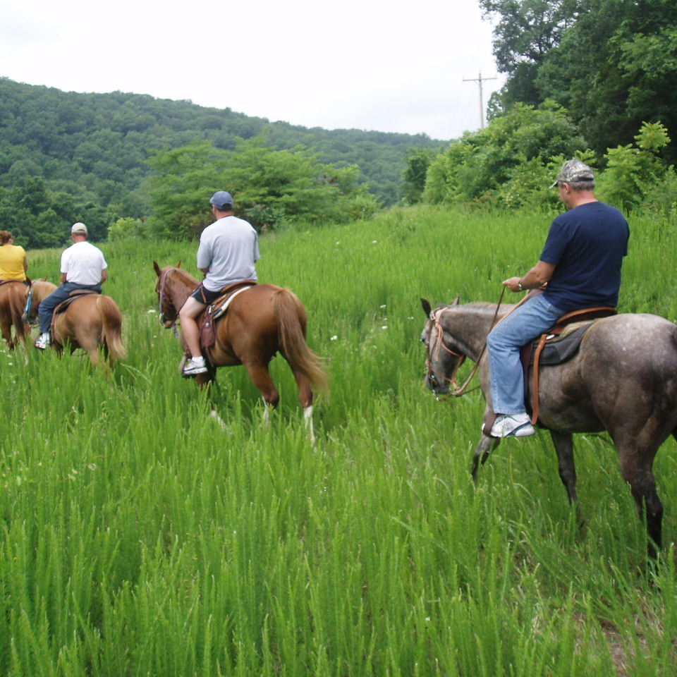 Trail ride june 23 2007 069