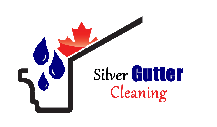 Silver Gutter Cleaning