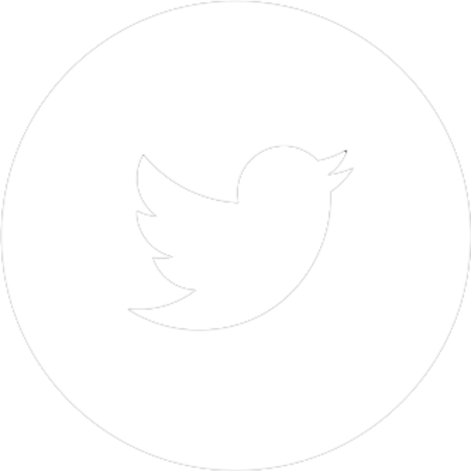 913515 twitter circle png.png