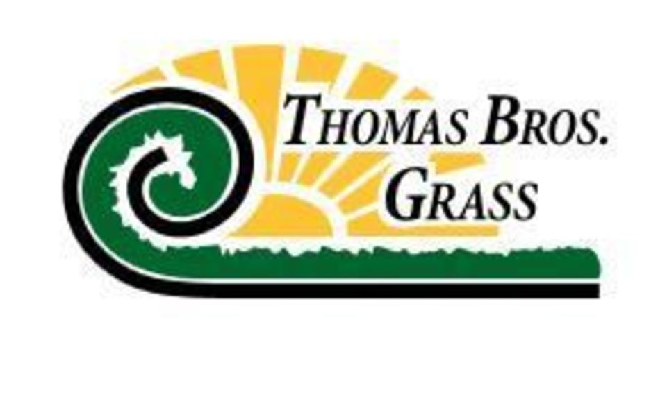 Thomas bro grass20160209 4623 swfaug