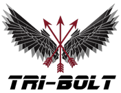 Tri-Bolt Global Security and Intelligence