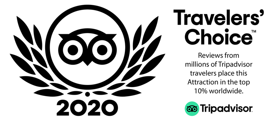 Travelers choice 2020 badge 01