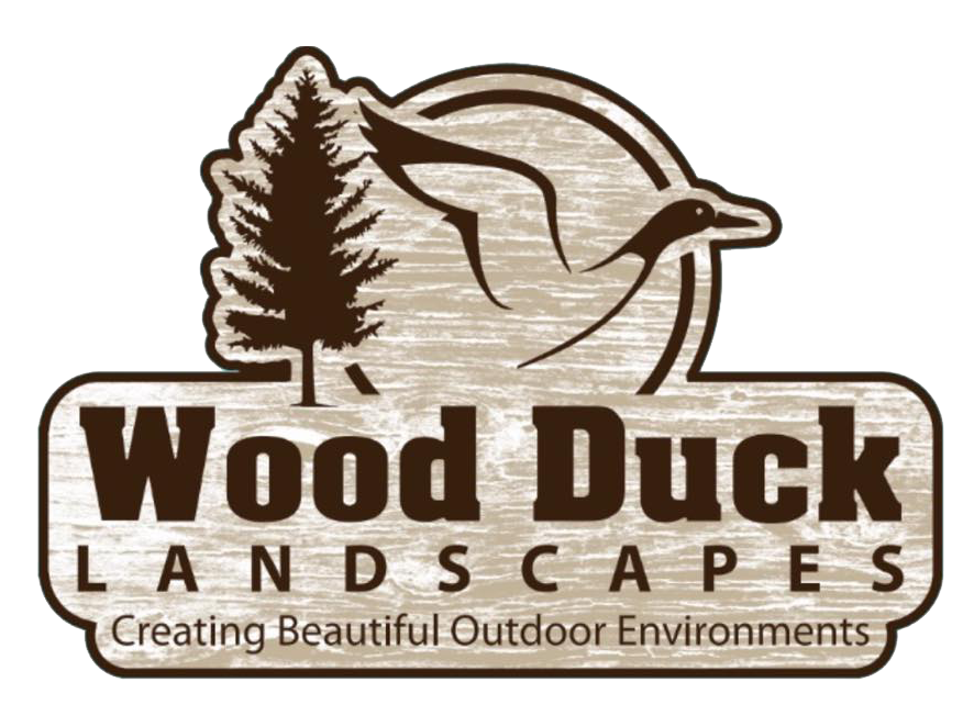 Wood Duck Landscapes