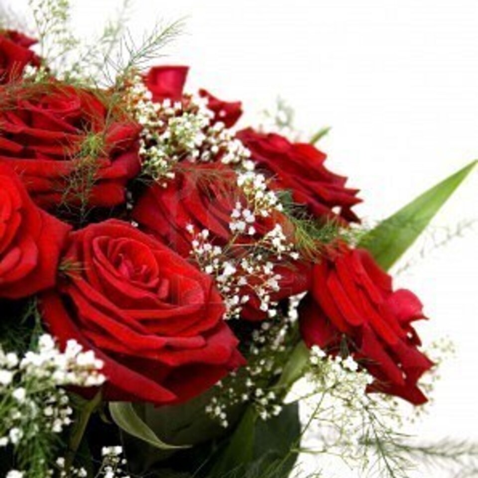961350 beautiful red rose bouquet