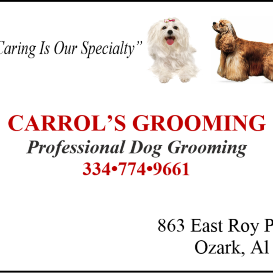 Carroll's groom20150519 13019 jdfvbb