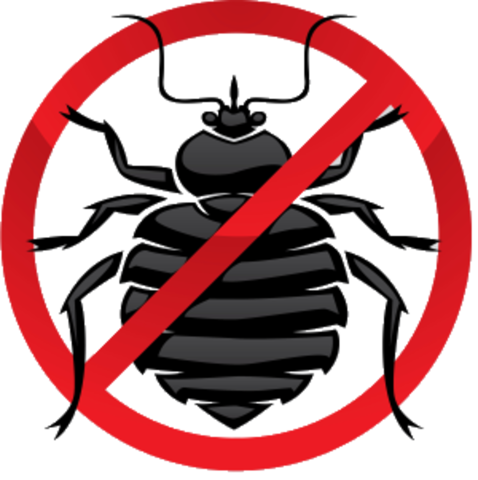 Just say no to bugs 0220150721 7885 1s3hilp