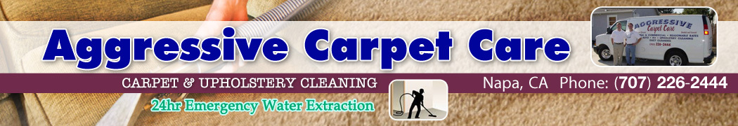 Aggressive Carpet Care & Janitorial
