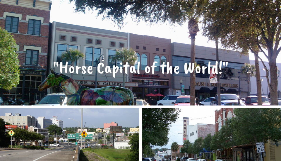 Horse capital of the world!