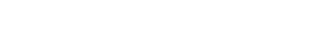 Southern Wall Systems