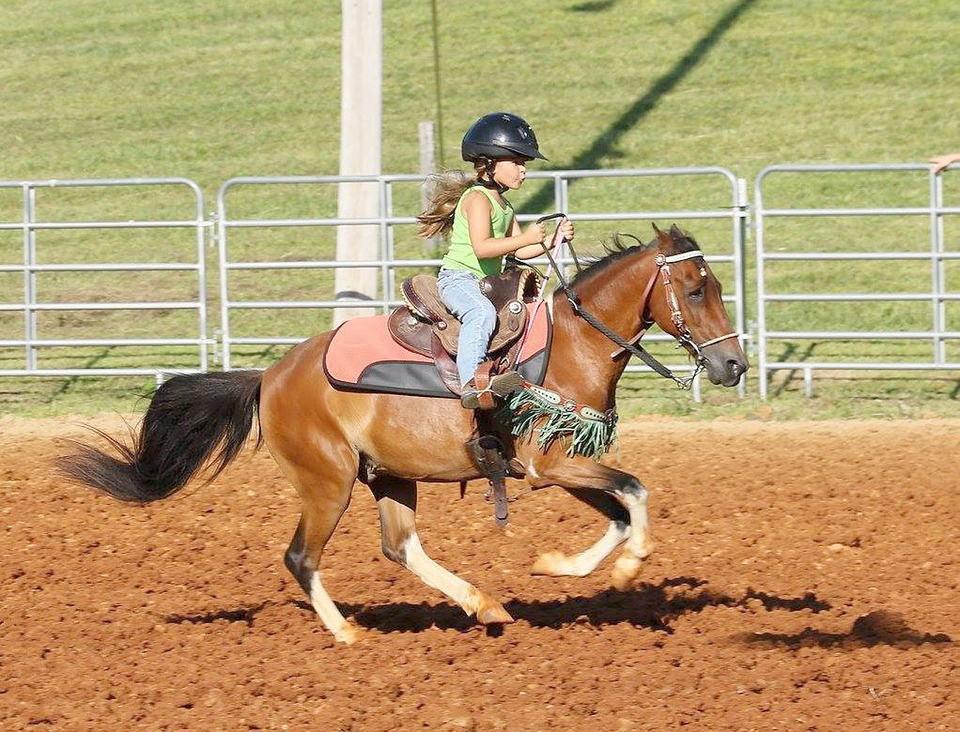 Summer Series Open Barrel Horse Show