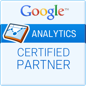 Google_analytics20150807-6964-qlof18_300x300