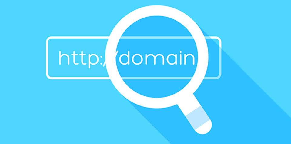 Domain search
