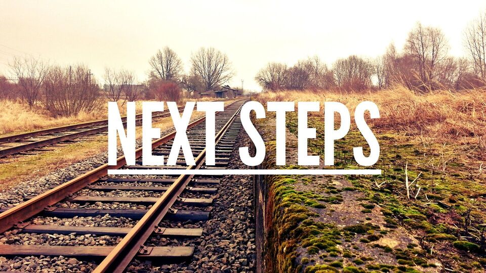 Next steps   website
