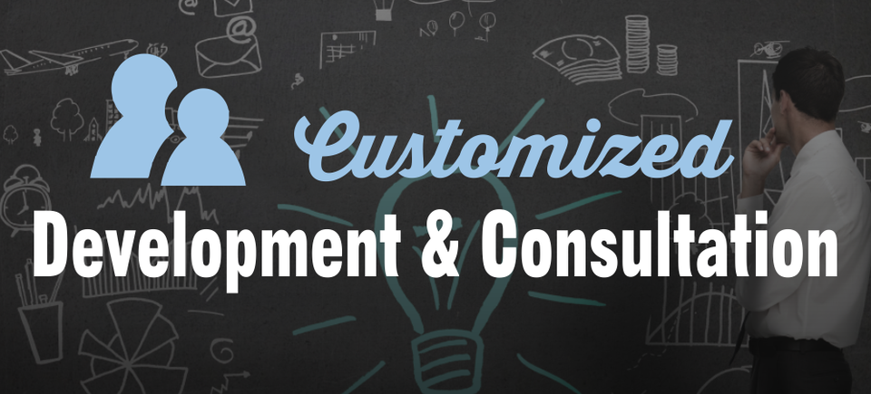 Customized development slide20161126 26987 1upuazi 960x435