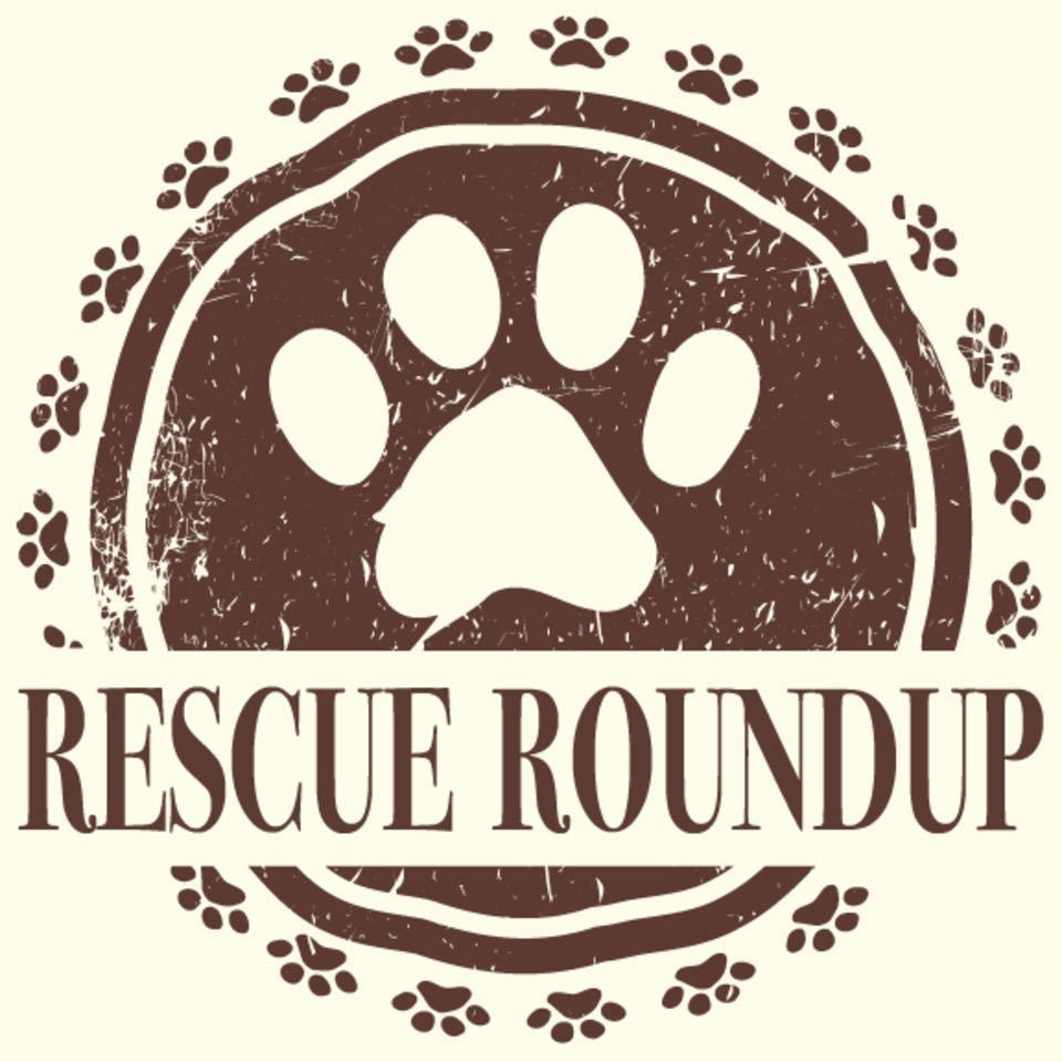 Nuredo magazine   tulsa oklahoma   living   fall home expo 2018   rescue roundup logo 2